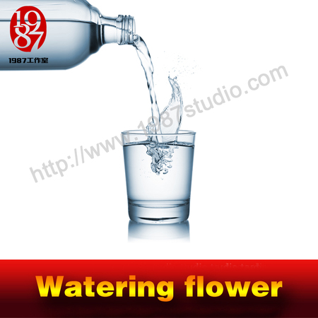 Watering Flower-EM lock version