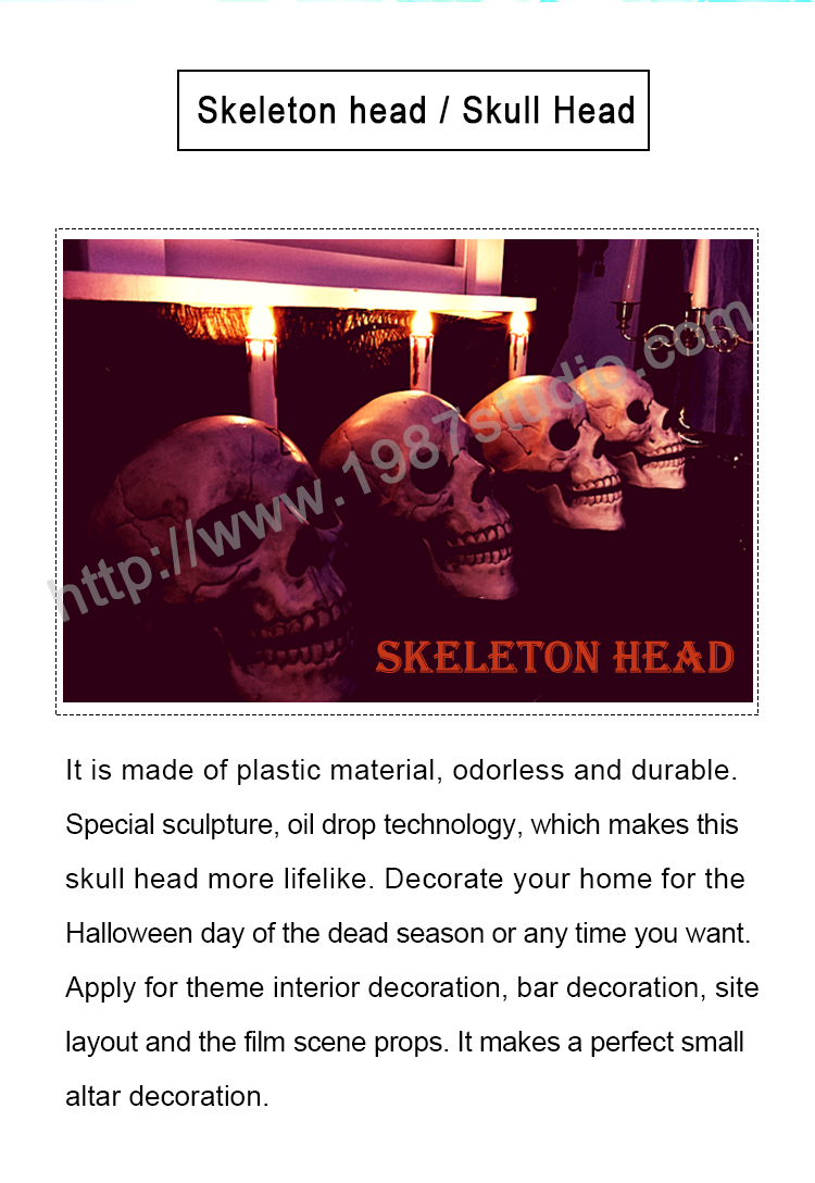 Skeleton head prop