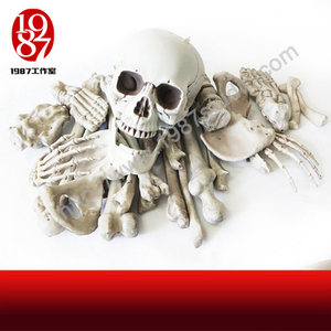 28PCS Combo Skeleton prop